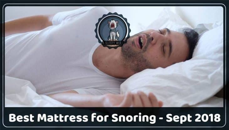 best mattress for snoring