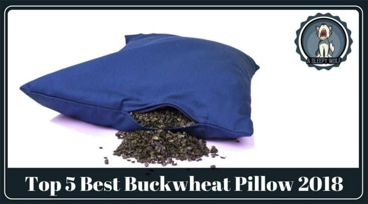Best Buckwheat Pillow Updated 2019