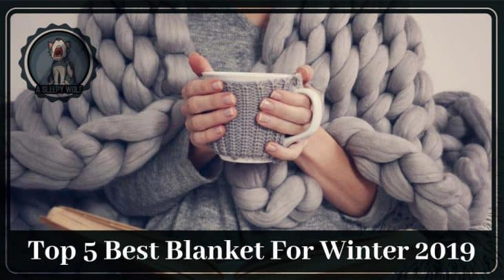 Best Blanket For Winter Updated 2019