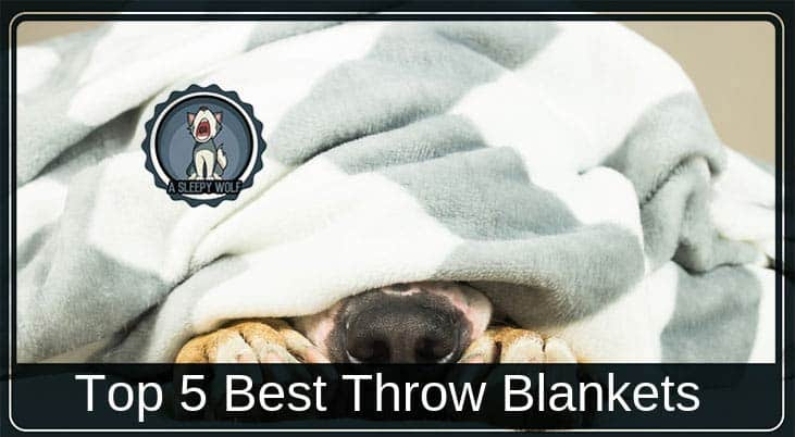 best throw blankets