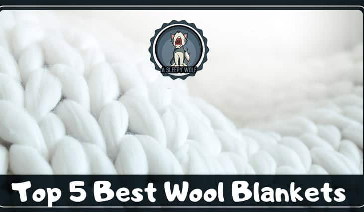 Best Wool Blanket