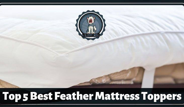 feather bed topper reviews